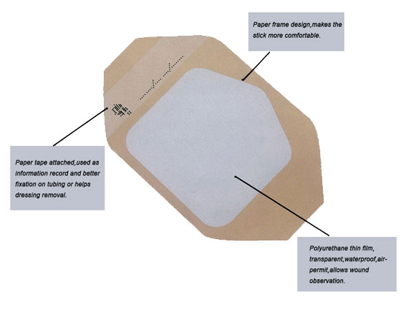 Transparent-adhesive-film-dressing